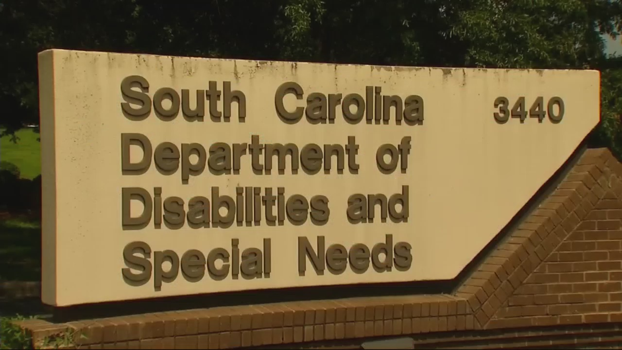 abused adults in sc_355023
