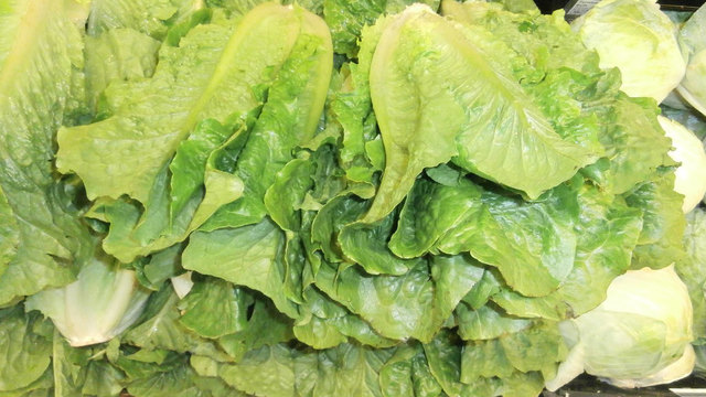 Stack_of_romaine_lettuce_heads_1527173017094_43356601_ver1.0_640_360_1543328427423.jpg