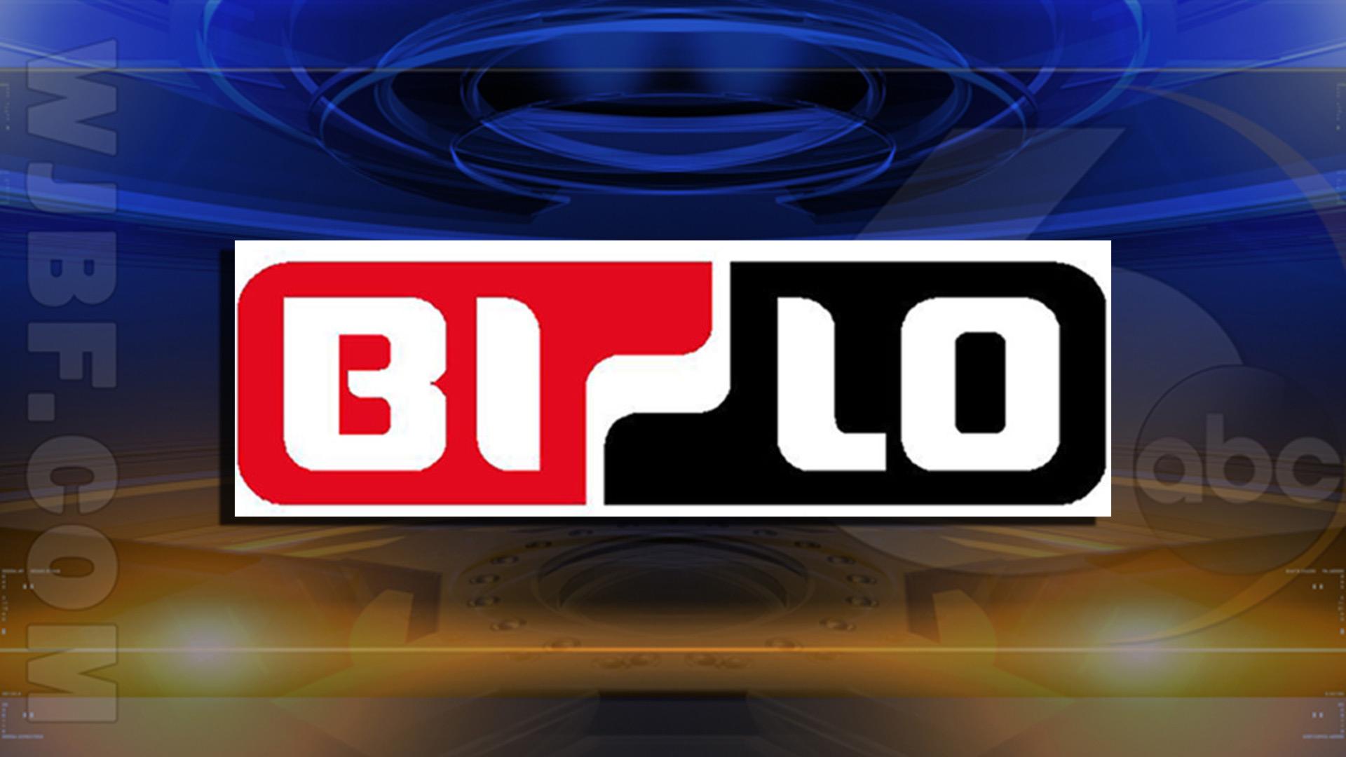 Bi-Lo-Logo_35552