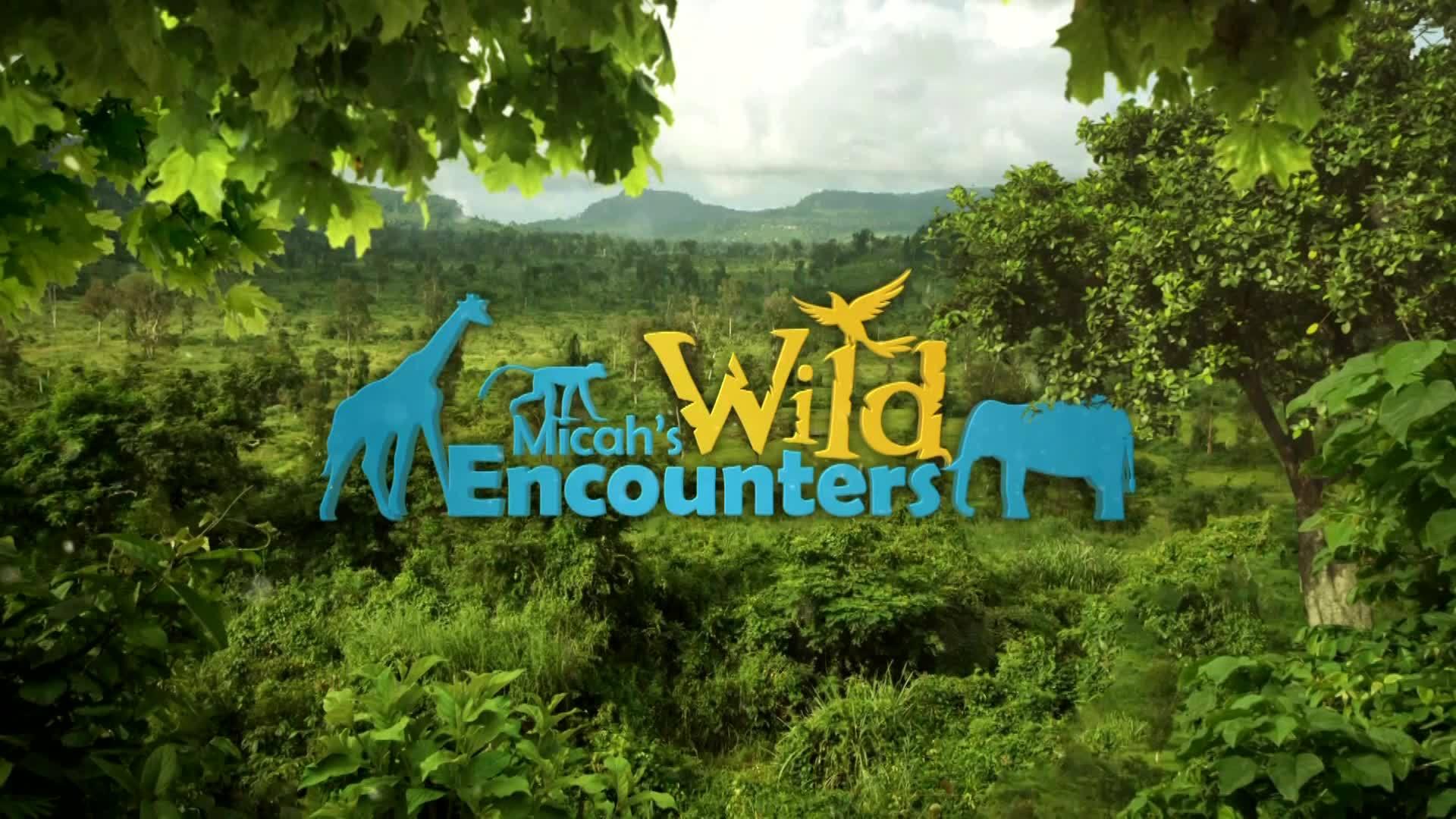 Wild Encounters: Greenhouse
