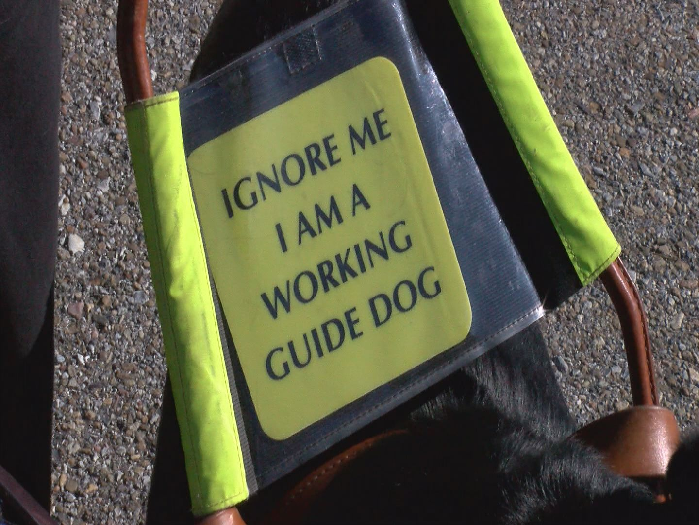 SERVICE DOG SIGN_96421