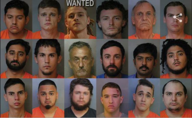 fla-sex-arrests_135074