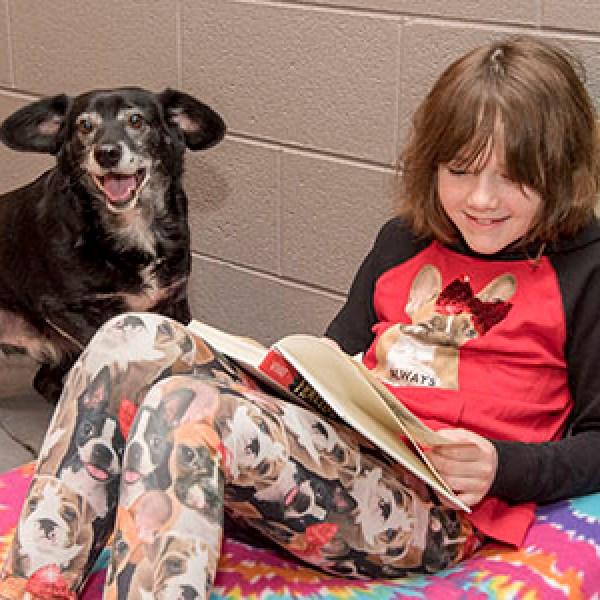animal shelter reading_1519649388048.jpg.jpg