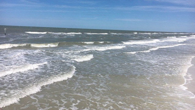 Swimming advisory issued at Pine Island Beach in Florida due