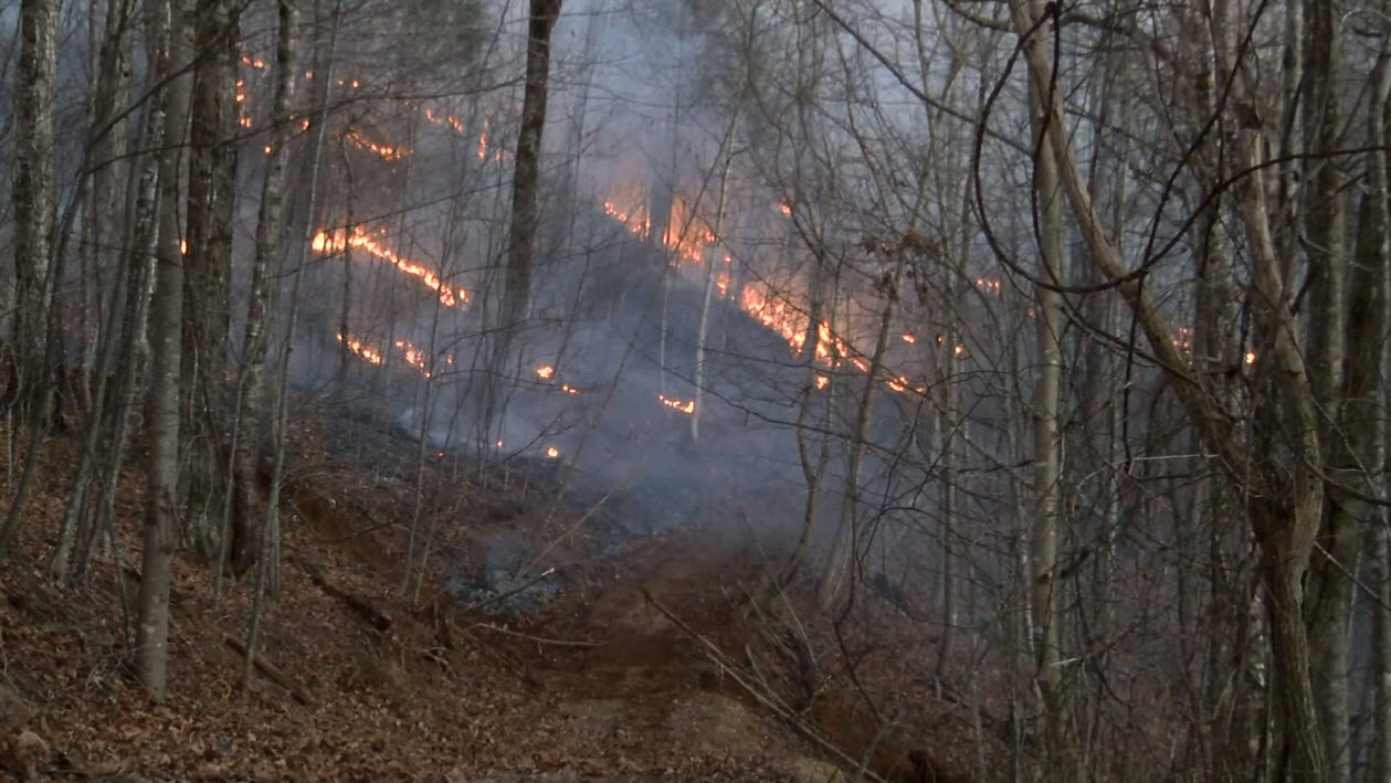 MAP: Prescribed burns planned in Cherokee National Forest ...