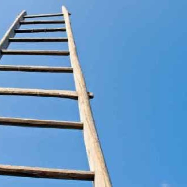 Ladders to get over the wall_1545581737407.jpeg.jpg