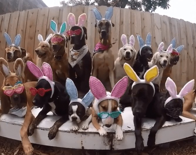 Easter_1555871591135.PNG