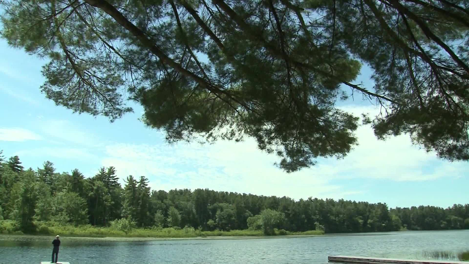 NH woman shoved dog into lake, watched as it drowned