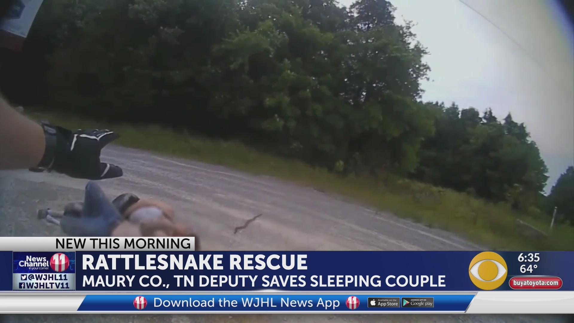 rattlesnake pic_1559561326270.jpg.jpg