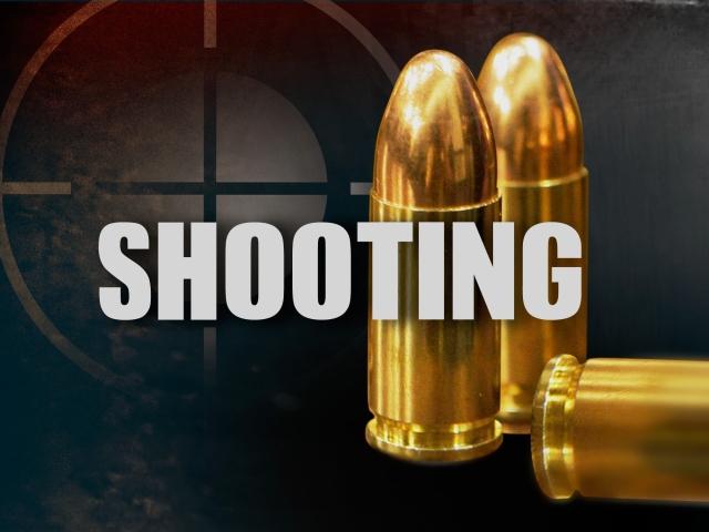 Shooting Investigation3_29033