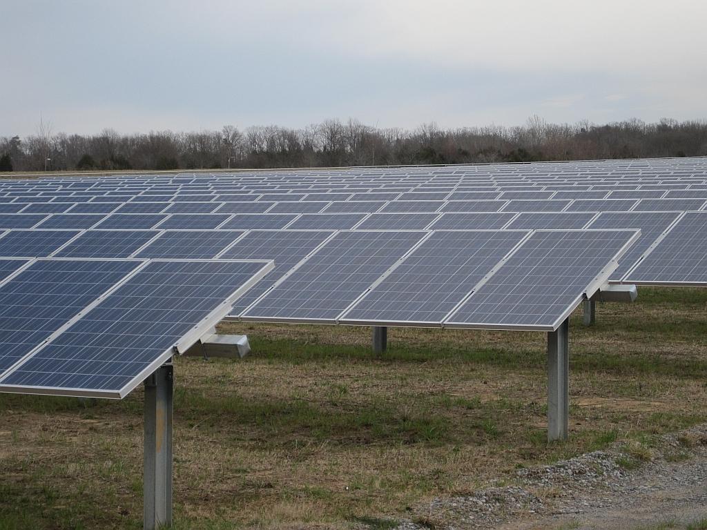 solar farm img_441156