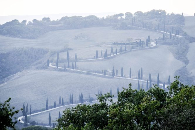 Cypress Lined Roads Tuscany