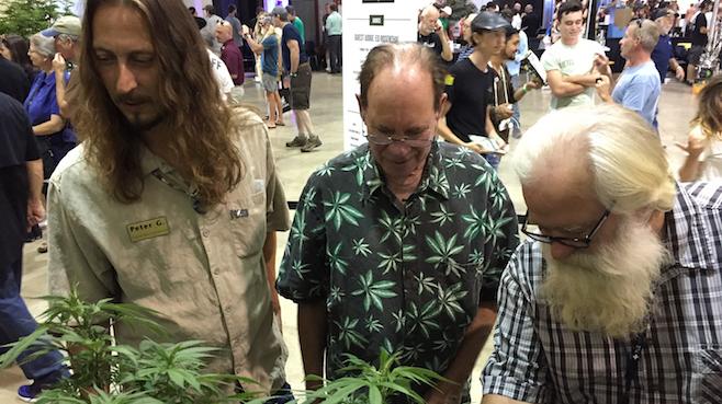 Oregon-Marijuana Fair_249016