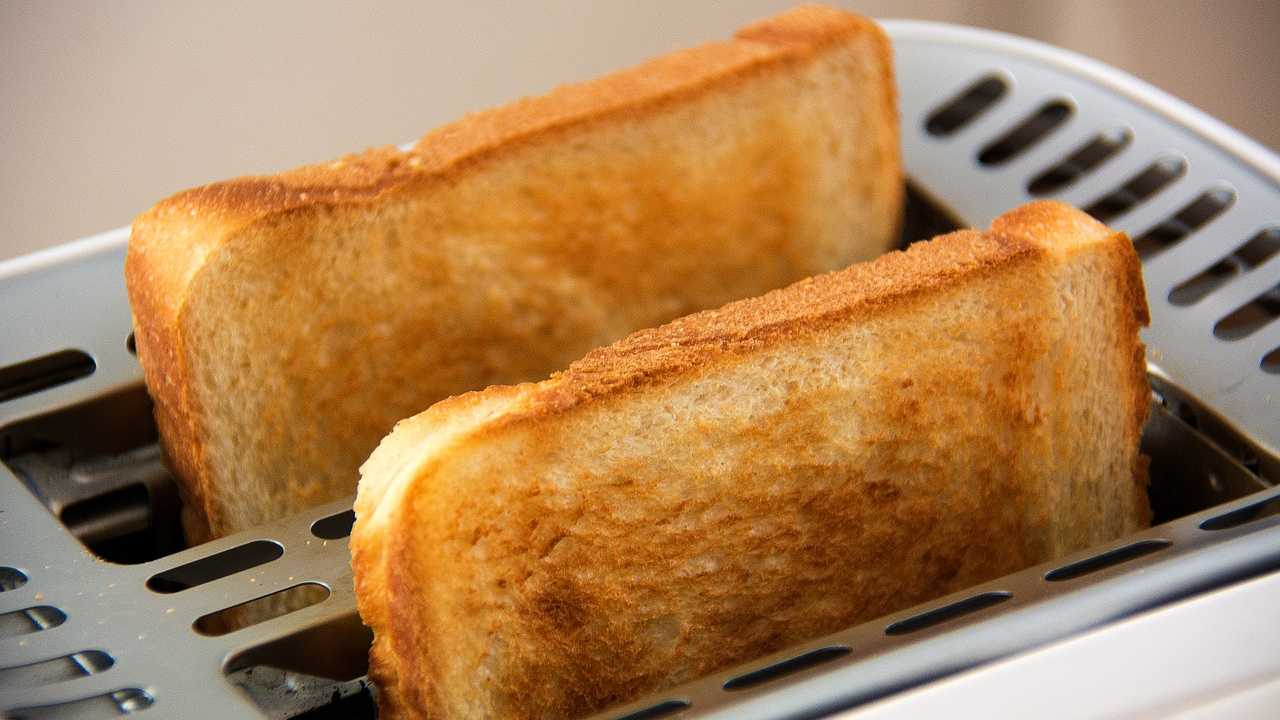 Bread, toast, breakfast generic