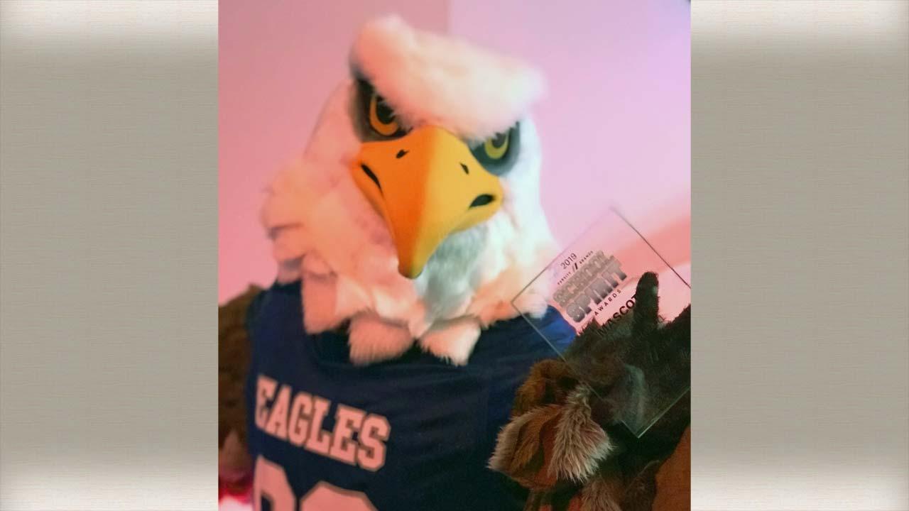 Hubbard Eagles mascot