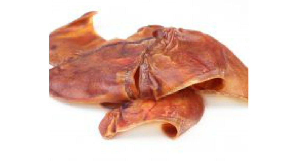 Pig ear dog treats linked to salmonella outbreak