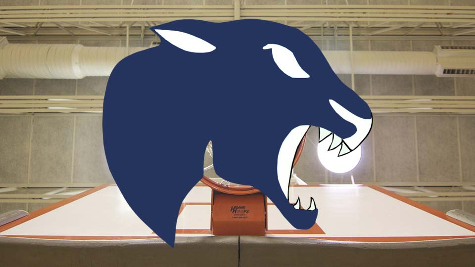 Bristol Panthers high school basketball