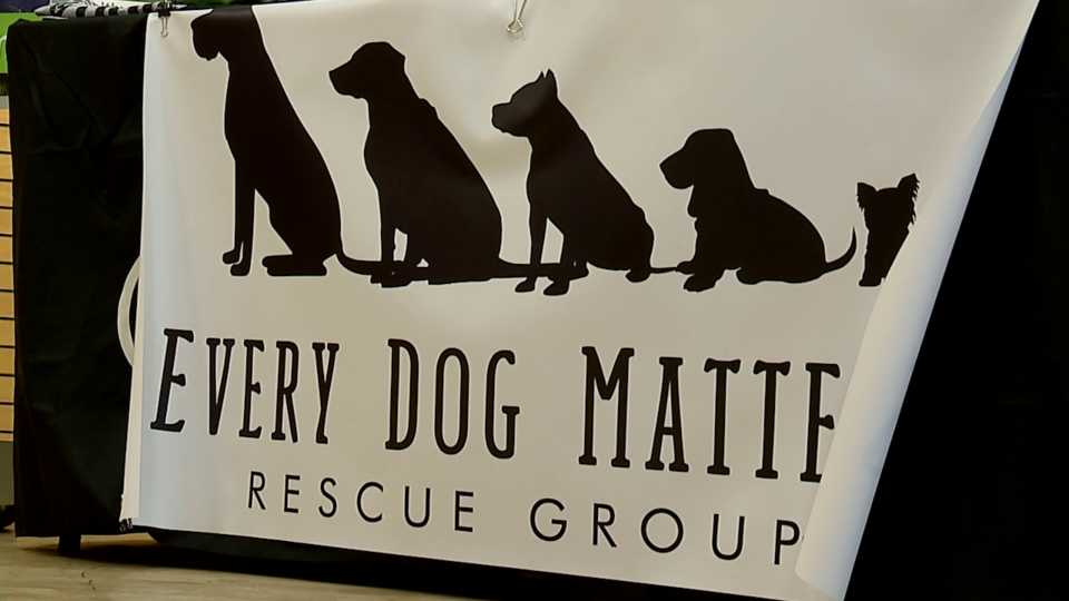 Every Dog Matters adoption event at Tri-Healthy CBD in the Southern Park Mall