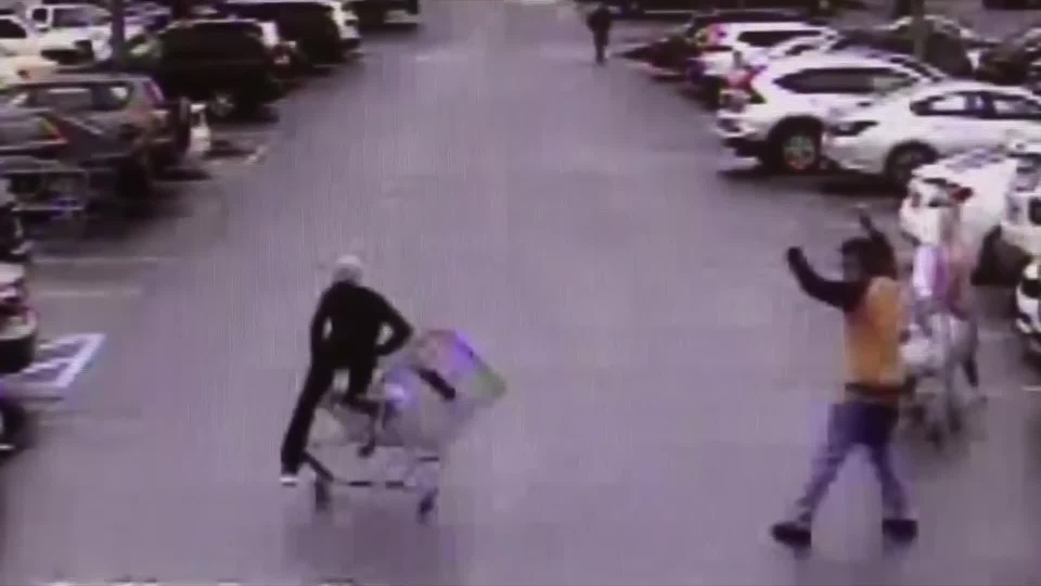 Shopping cart stops Georgia shoplifting suspect