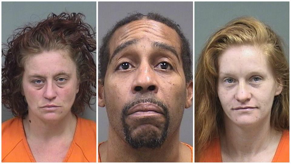 Mindy Gandy, Darnell Mullins, Heather Maravola, drug charges in Boardman