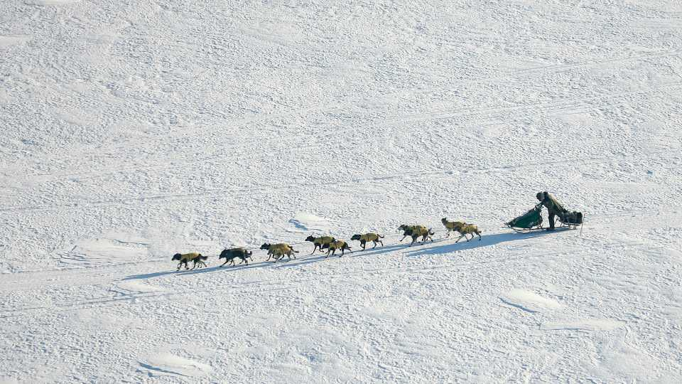 In this March 10, 2007 file photo Iditarod Trail Sled Dog Race front runner, four-time Iditarod champion Jeff King of Denali Park, Alaska, drives his dog team through the wind on the Yukon River near the Eagle Island, Alaska. When 57 mushers line up Sunday, March 8, 2020 for the official start of the Iditarod Trail Sled Dog Race, it will be the second-smallest field in the past two decades.