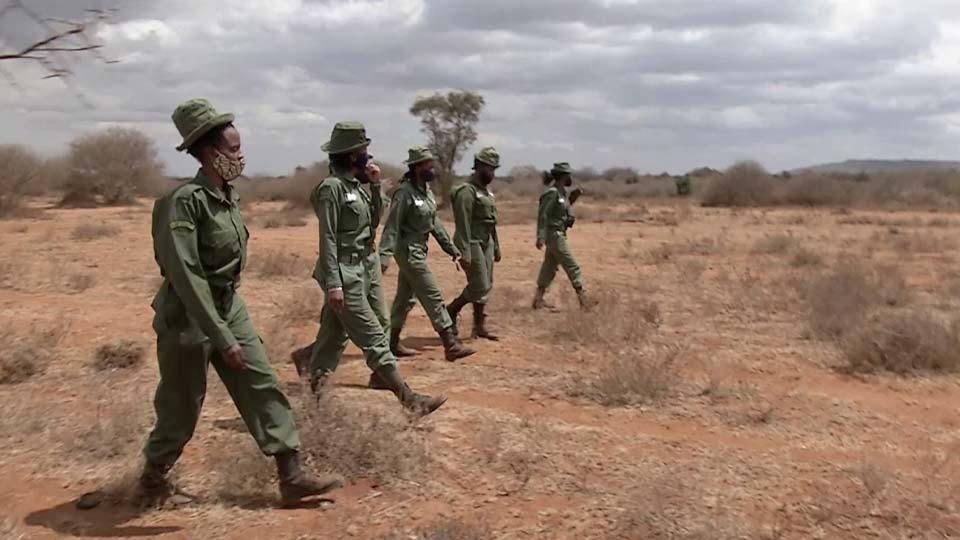 Team Lioness patrol, Amboseli national park, Kenya