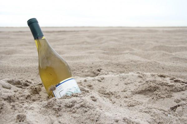 beach-n-booze-2_274485