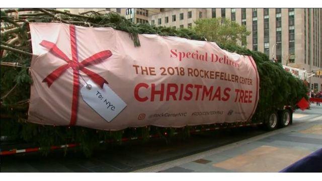 2018 Rockefeller Christmas Tree arrives_1541868622560.JPG_61692684_ver1.0_640_360_1541878650570.jpg_61703797_ver1.0_640_360_1541880942285.jpg.jpg