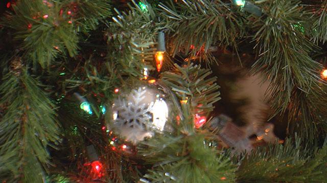 generic christmas tree1_