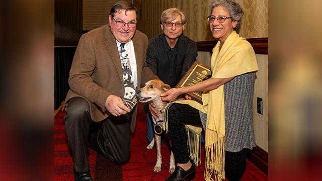 henry the rescue dog_1551845084318.jpg.jpg
