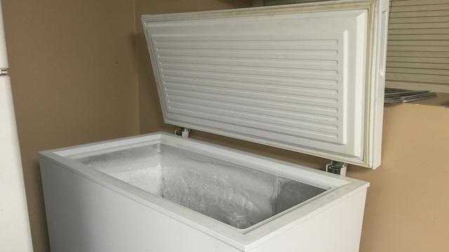 freezer generic