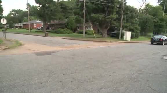 Memphis man mauled by dogs