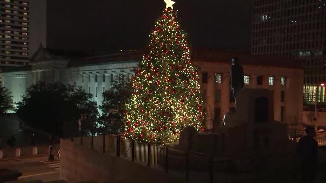 state capitol tree