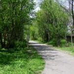 trail patrol (2)