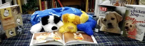reading_animals_6716837287