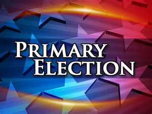 Primary Election2
