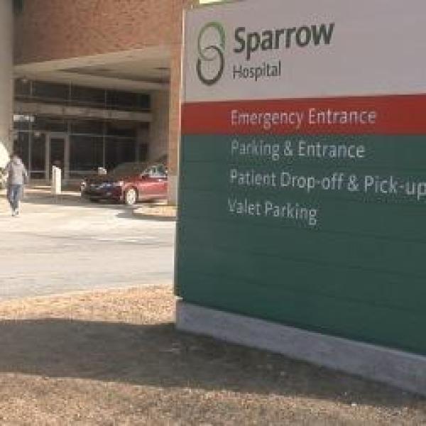 sparrow flu numbers_8546