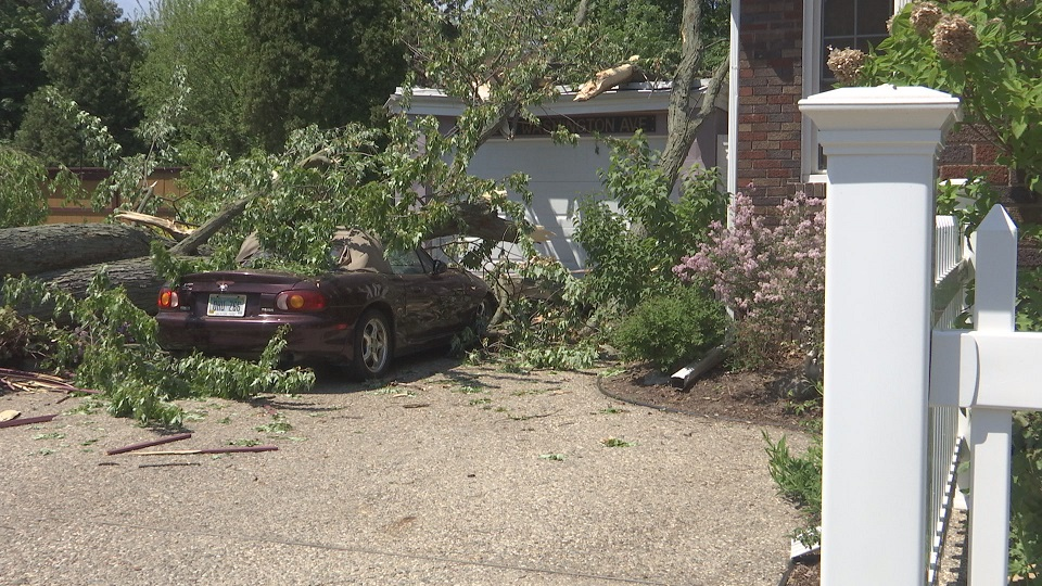 tree crushes car and house_265483