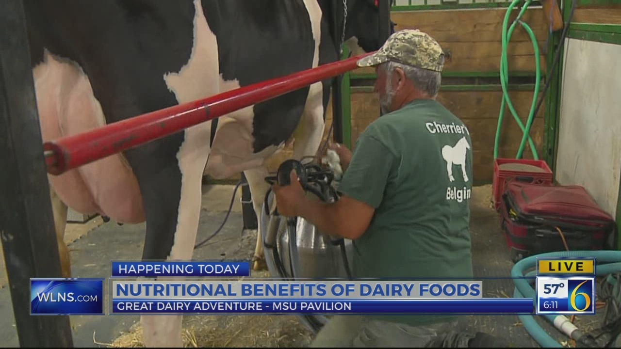 6 News This Morning: great dairy adventure