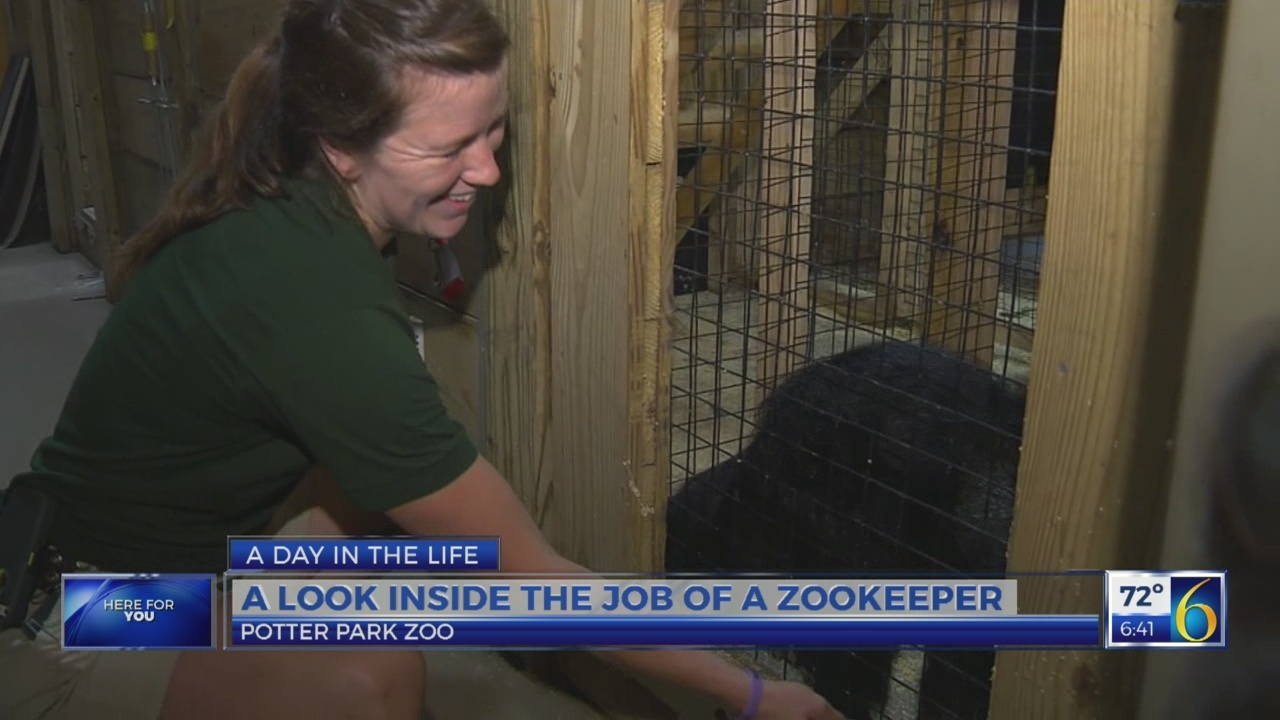 6 News This Morning: day in the life: zookeeper