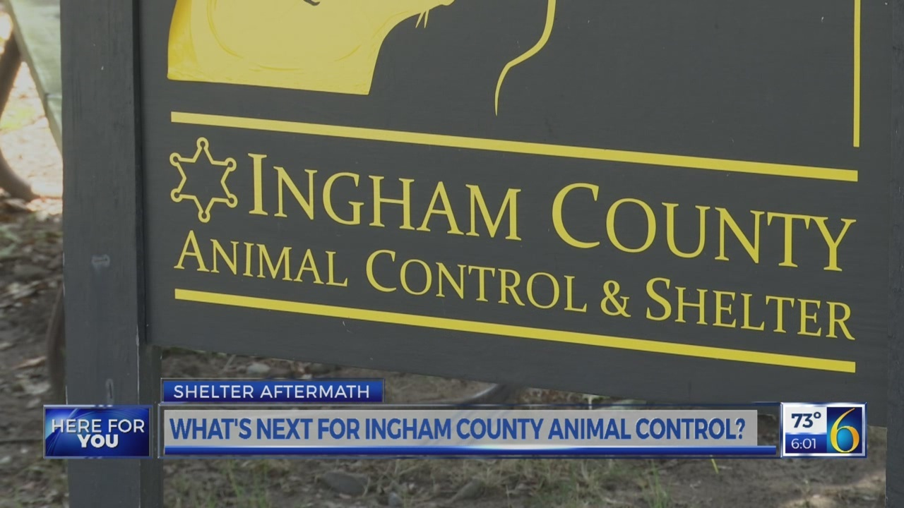 What's next for Ingham County Animal Control?
