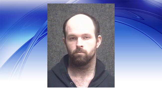 DeWitt police car suspect-full_1550783460433.jpg.jpg