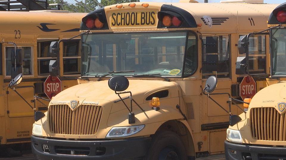school bus_313497