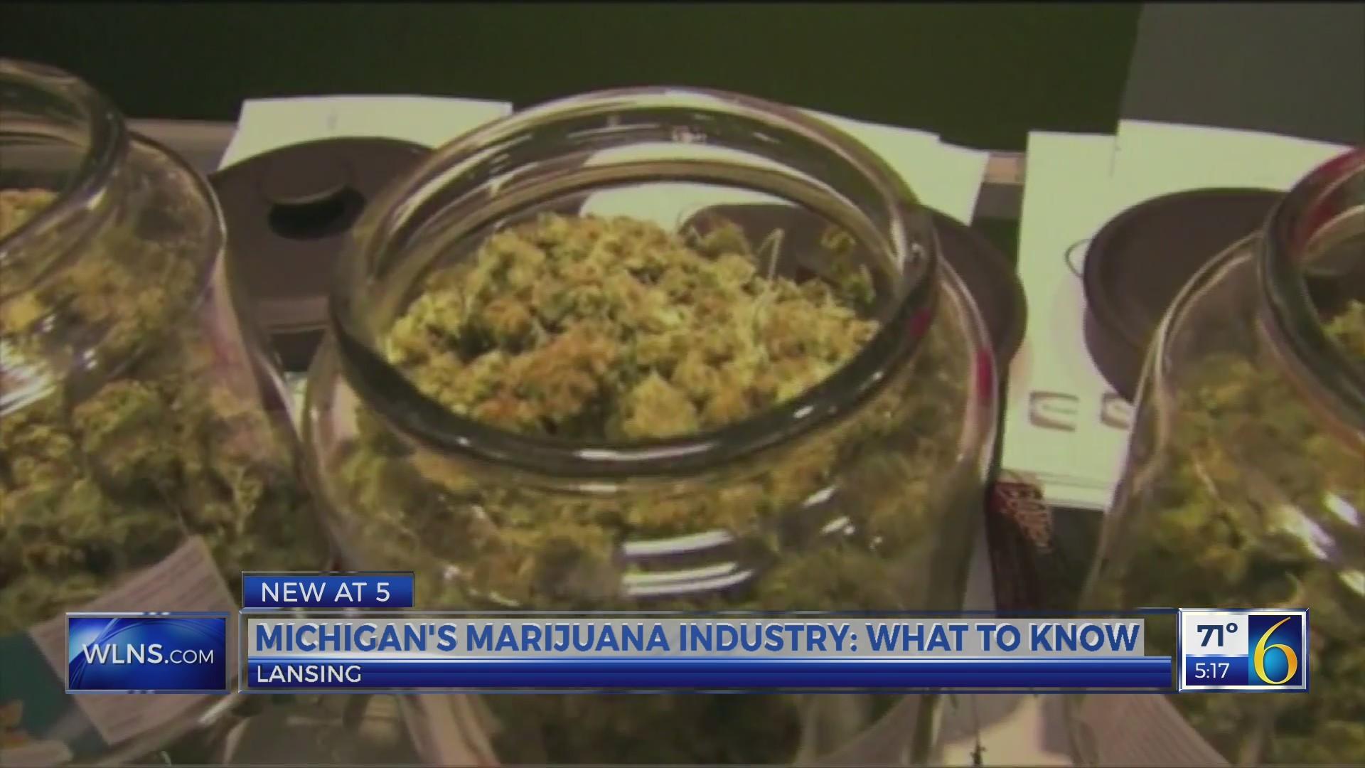 Michigan_s_Marijuana_Industry__what_to_k_0_20190523212522