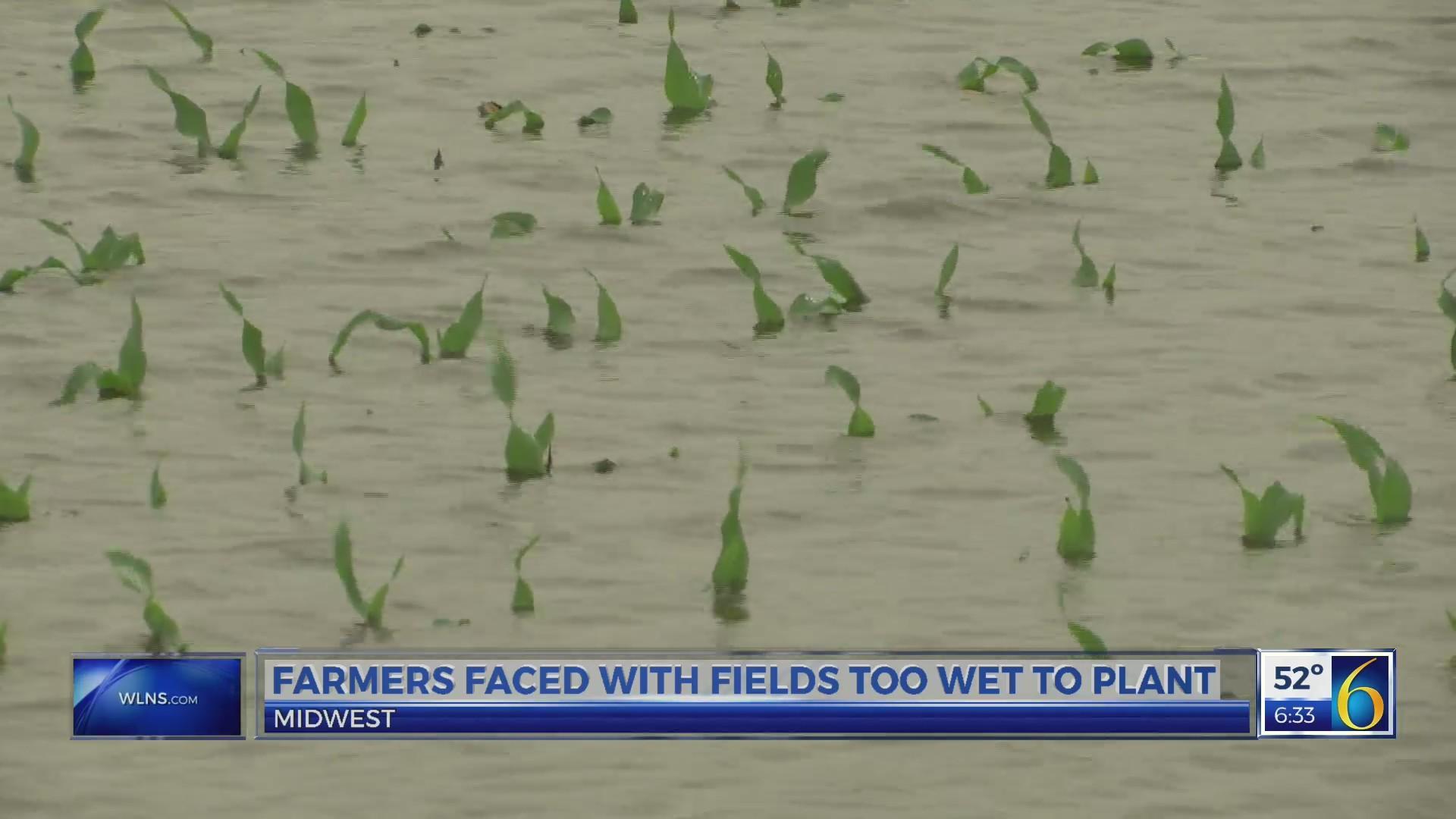This Morning: corn planting 2