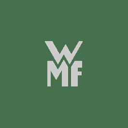glass insert zeno