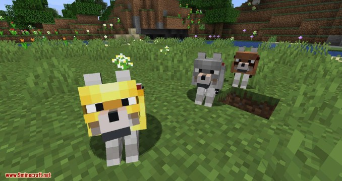 Wolves with armor mod for minecraft 10