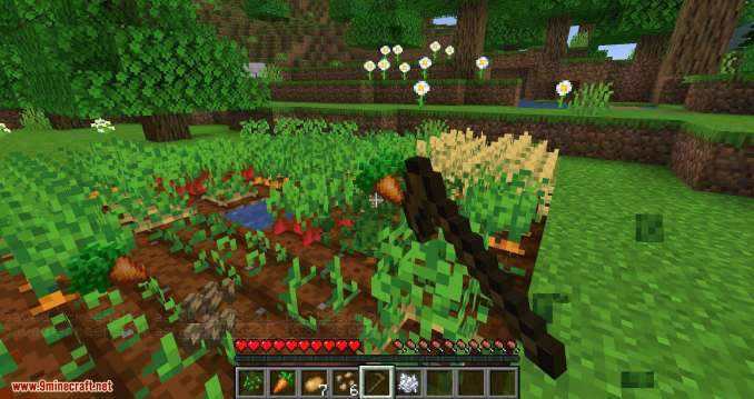 Replanting Crops mod for minecraft 08