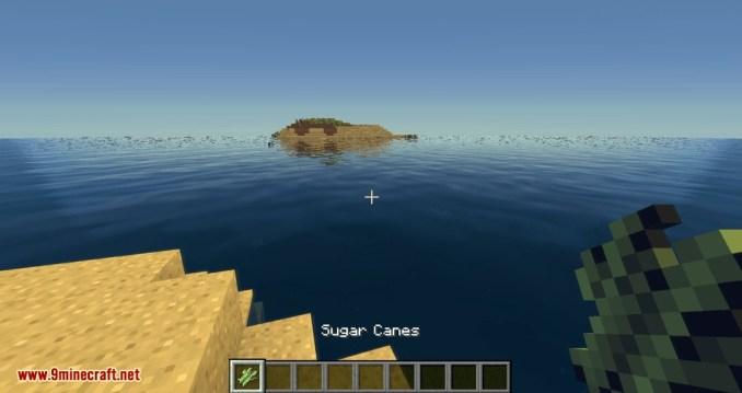 Configurable Cane mod for minecraft 03