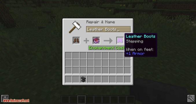 Step mod for minecraft 04